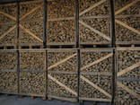 Hornbeam Firewood / Hainbuche / Avnbøg - фото 4