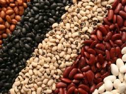 I will sell beans