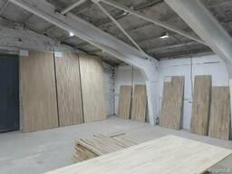 Oak panel. Oak shield - фото 1