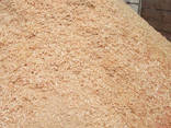 Опилки хвойных и лиственных пород - фото 1