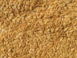 Manufacturer sells: confectionary flax