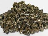 Топливные пеллеты из лузги подсолнечника - photo 1